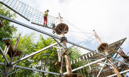 Picture of a child using the tree rope course at Sky Reach